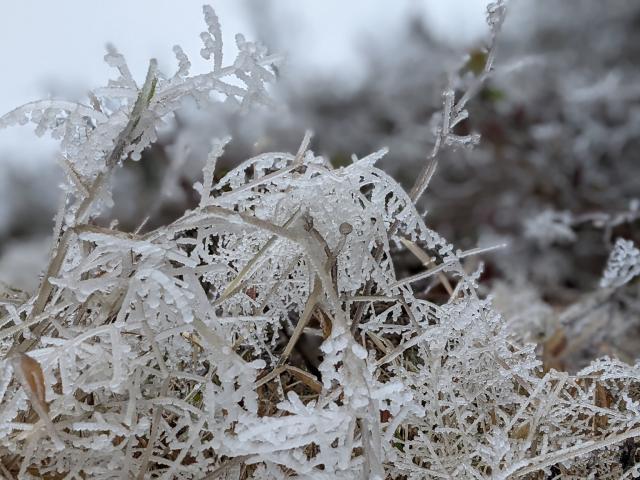 Miền Bắc rét kinh hoàng, những nơi nào có thể xảy ra mưa tuyết?