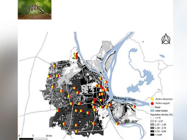 Ổ dịch mới chưa dập xong, Campuchia phải đối phó loài gây bệnh lần đầu có ở thủ đô