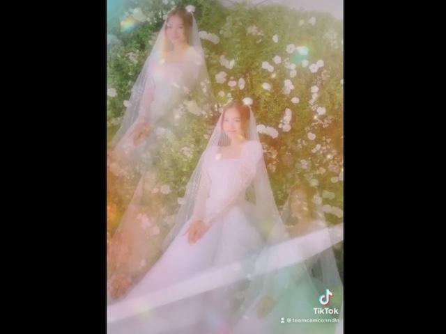 Tung clip TikTok, 'Ninh Dương Lan Ngọc' lập tức lên top BXH tìm kiếm Google
