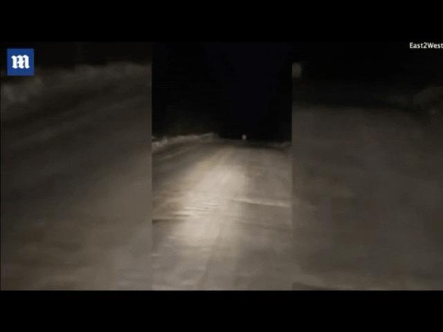 """Video: Xót xa cảnh gấu Bắc Cực lang thang ở nơi cách xa """"nhà"""" 500km"""