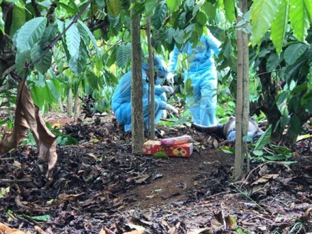 Bi kịch vợ simê đồng nghiệp, chồng bị sát hại rồi giấu xác trong vườn điều