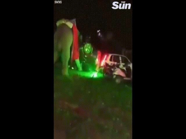 Video: Voi chở chú rể đến đám cưới bỗng nổi điên, lật ngửa 6 chiếc ô tô