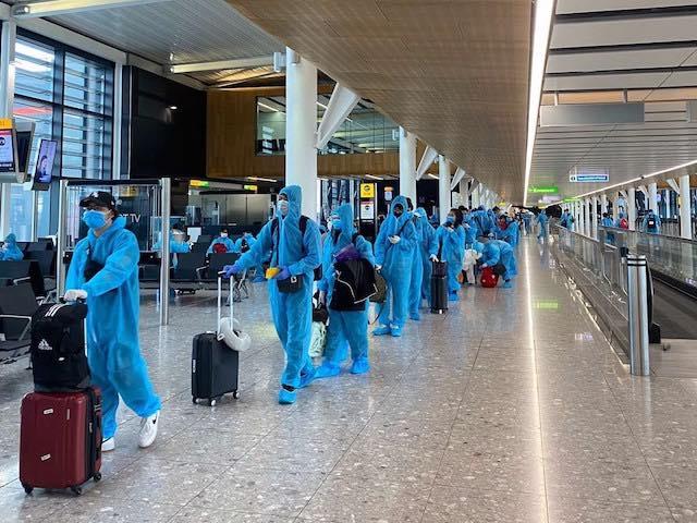 Cảnh báo email và tin nhắn lừa đảo bán vé máy bay về Việt Nam