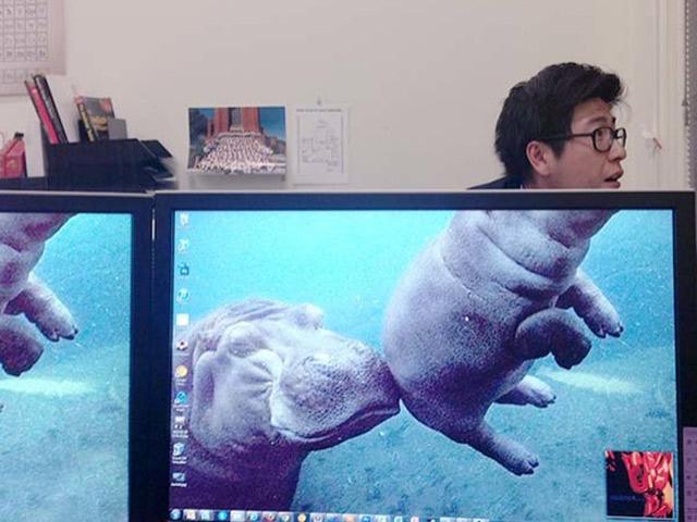 Hình ảnh lầy lội khi dân văn phòng rảnh rỗi sinh nông nổi