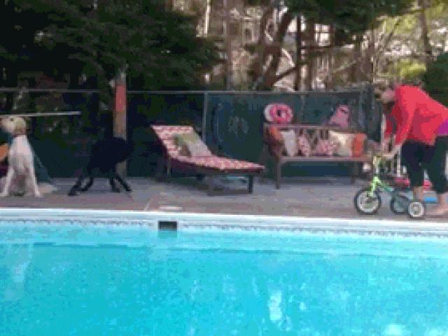 Những pha tai nạn hài hước nhất quả đất với xe đạp
