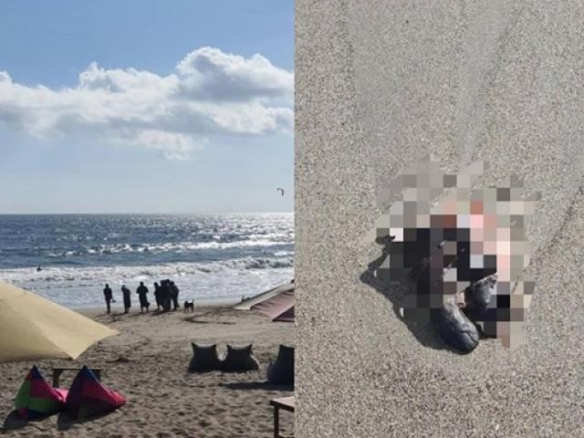 Hoảng hồn phát hiện bàn chân người trôi dạt bờ biển