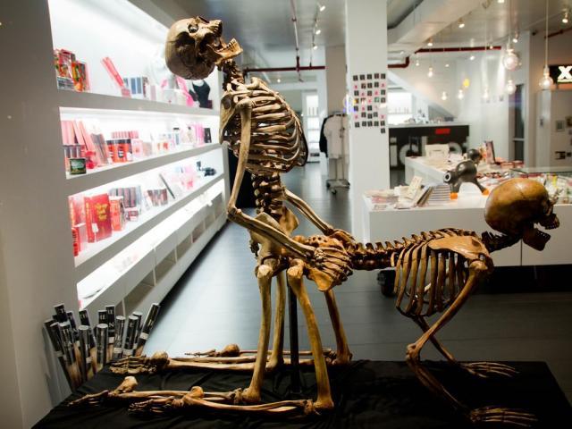 """""""Ngượng chín mặt"""" khi thăm bảo tàng nhạy cảm ở New York"""