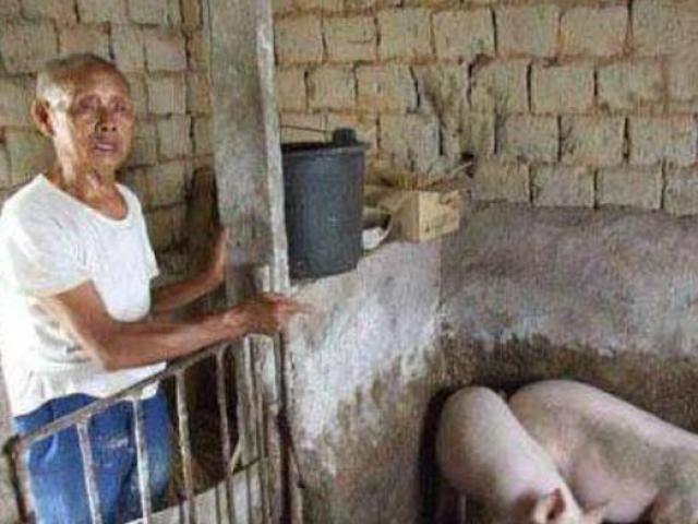 Nửa đêm nghe âm thanh lạ gần chuồng lợn, lần theo không ngờ phát hiện mộ hoàng đế TQ