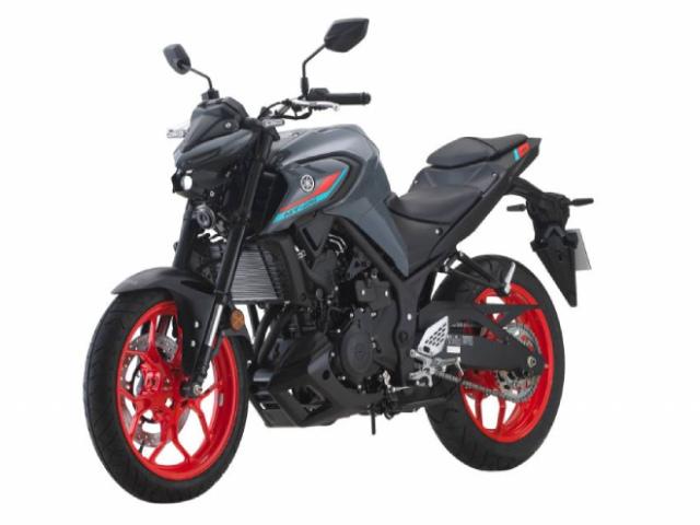 2021 Yamaha MT-25 cập nhật màu mới, hút dân tập chơi