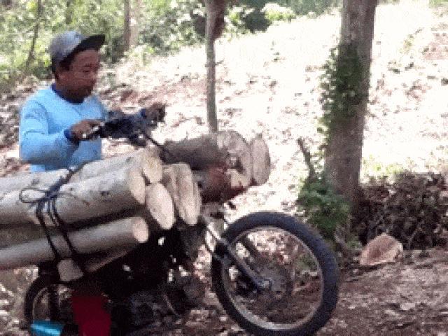 Video: Lái xe máy chở gỗ leo dốc, ngã lộn vòng ra sau