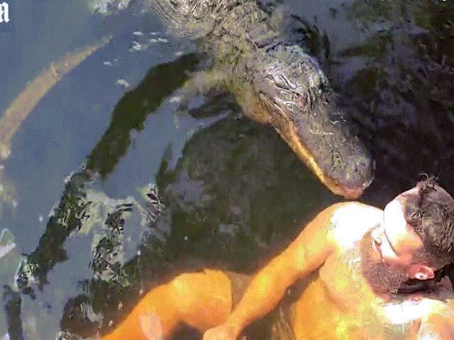 """Bơi cùng """"bạn thân"""" là cá sấu rồi bị ngoạm trúng vai, người đàn ông lên bờ nói điều sốc"""